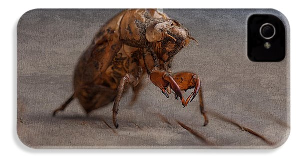 Cicada Shell IPhone 4s Case by Tom Mc Nemar