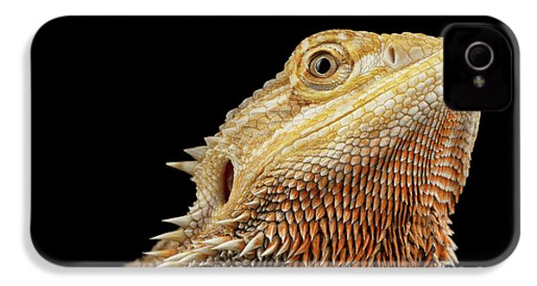Closeup Head Of Bearded Dragon Llizard, Agama, Isolated Black Background IPhone 4s Case by Sergey Taran