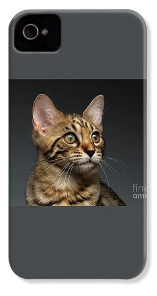 Closeup Portrait Of Bengal Male Kitty On Dark Background IPhone 4s Case by Sergey Taran