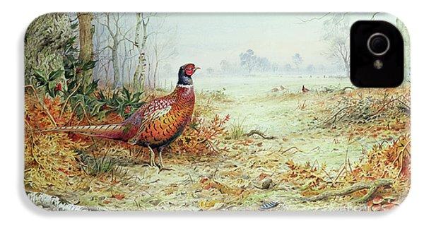 Cock Pheasant  IPhone 4s Case