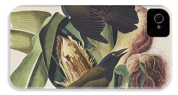 Common Crow IPhone 4s Case by John James Audubon