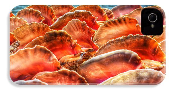 Conch Parade IPhone 4s Case by Jeremy Lavender Photography
