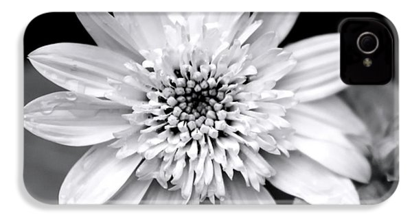 IPhone 4s Case featuring the photograph Coreopsis Flower Black And White by Christina Rollo
