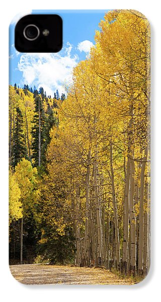 Country Roads IPhone 4s Case by David Chandler