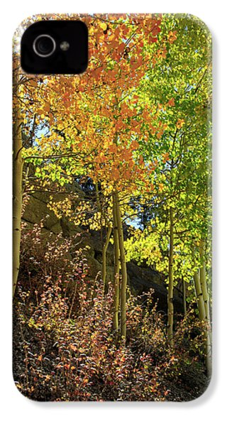 IPhone 4s Case featuring the photograph Crisp by David Chandler