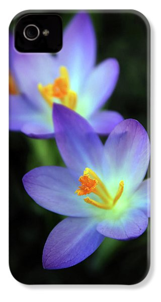 IPhone 4s Case featuring the photograph Crocus In Bloom by Jessica Jenney