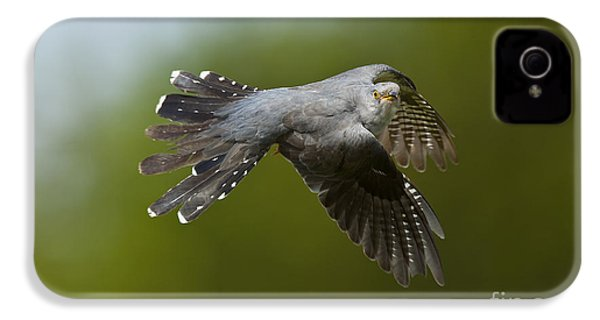 Cuckoo Flying IPhone 4s Case by Steen Drozd Lund