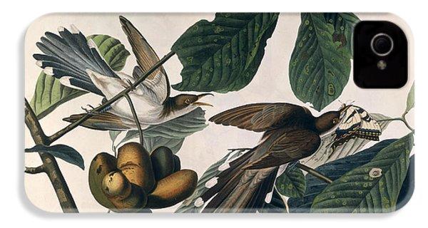 Cuckoo IPhone 4s Case by John James Audubon