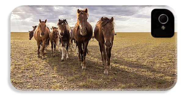 IPhone 4s Case featuring the photograph Curious Horses by Hitendra SINKAR