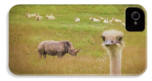 Curious Ostrich And White Rhino IPhone 4s Case