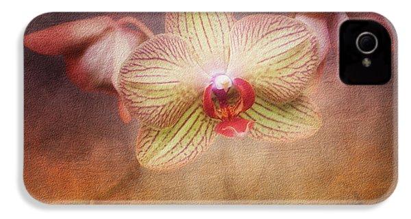 Cymbidium Orchid IPhone 4s Case by Tom Mc Nemar