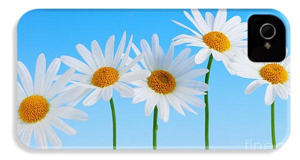 Daisy Flowers On Blue IPhone 4s Case by Elena Elisseeva