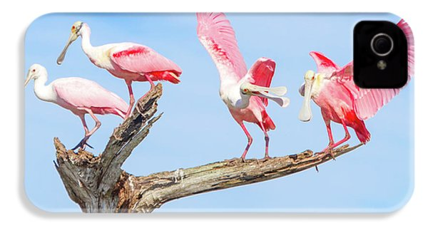 Day Of The Spoonbill  IPhone 4s Case