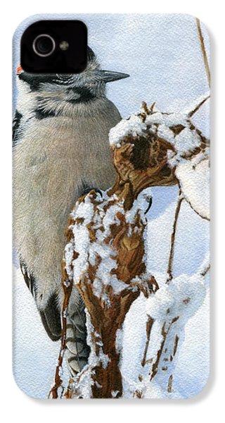 Downy Woodpecker  IPhone 4s Case by Ken Everett