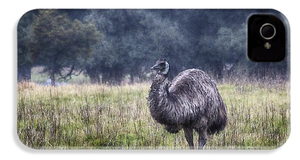 Early Morning Stroll IPhone 4s Case by Douglas Barnard