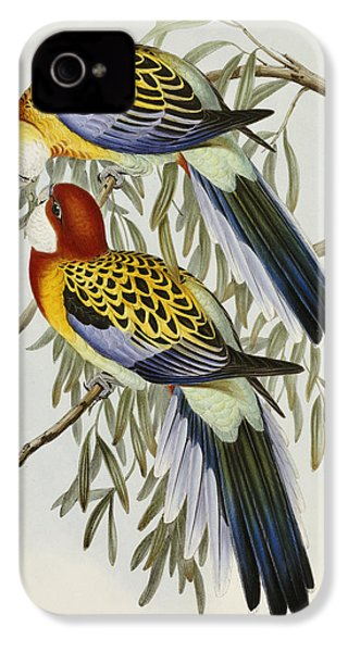 Eastern Rosella IPhone 4s Case by John Gould