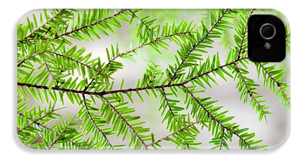Evergreen Abstract IPhone 4s Case by Christina Rollo