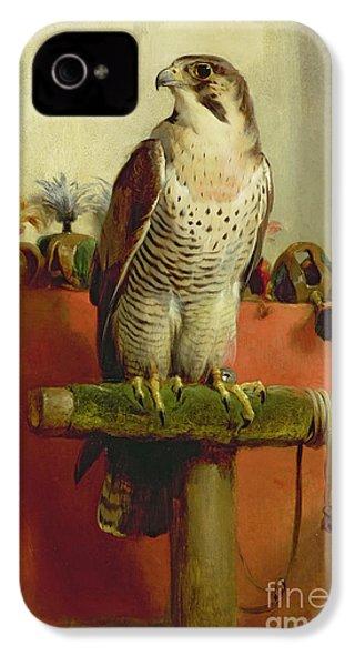 Falcon IPhone 4s Case by Sir Edwin Landseer