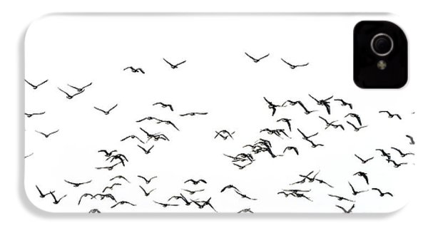 Flock Of Beautiful Migratory Lapwing Birds In Clear Winter Sky I IPhone 4s Case by Matthew Gibson