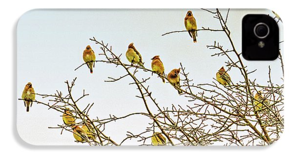 Flock Of Cedar Waxwings  IPhone 4s Case by Geraldine Scull