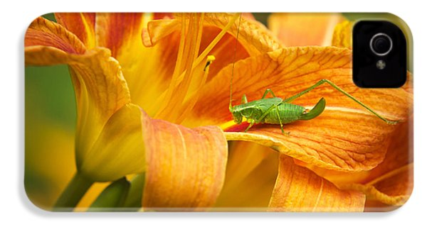 Flower With Company IPhone 4s Case by Christina Rollo