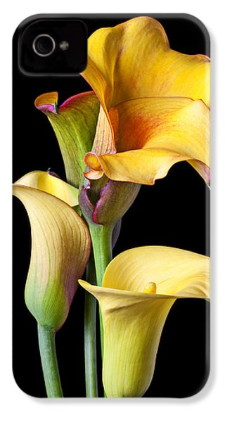 Four Calla Lilies IPhone 4s Case by Garry Gay