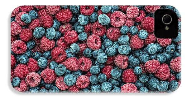 Frozen Berries IPhone 4s Case by Tim Gainey