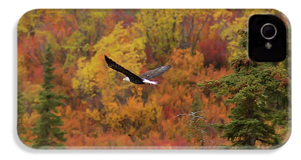 Glide Path IPhone 4s Case by Ed Boudreau