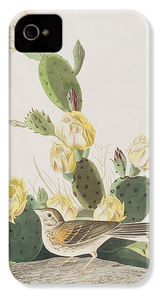 Grass Finch Or Bay Winged Bunting IPhone 4s Case by John James Audubon