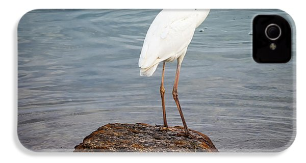 Great White Heron With Fish IPhone 4s Case by Elena Elisseeva