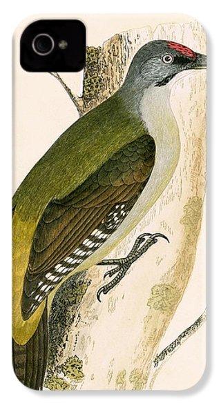 Grey Woodpecker IPhone 4s Case