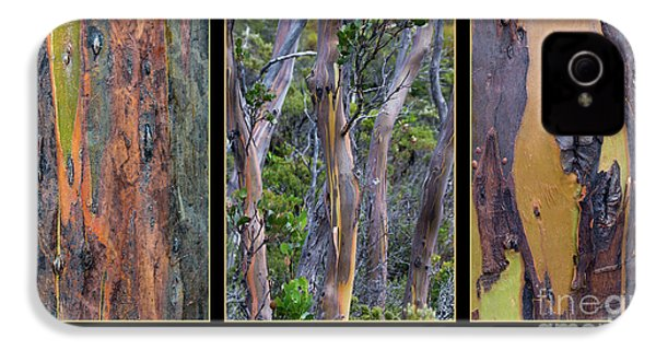 Gum Trees At Lake St Clair IPhone 4s Case by Werner Padarin