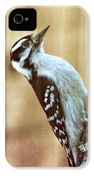 Hairy Woodpecker IPhone 4s Case by Bob Orsillo