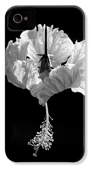 Hibiscus As Art 2 IPhone 4s Case by Hitendra SINKAR