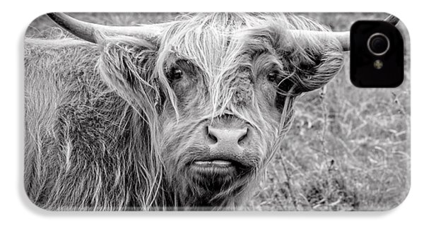 Highland Cow IPhone 4s Case by Jeremy Lavender Photography