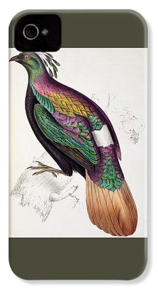 Himalayan Monal Pheasant IPhone 4s Case