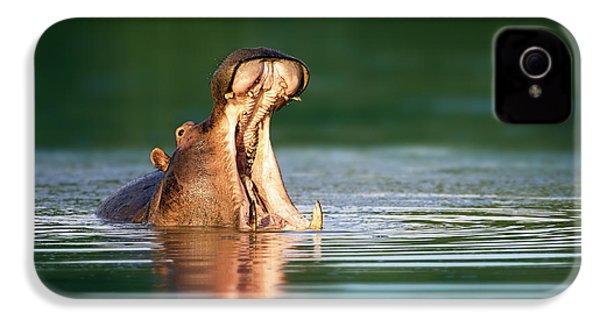 Hippopotamus IPhone 4s Case by Johan Swanepoel