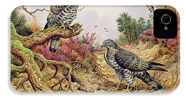 Honey Buzzards IPhone 4s Case by Carl Donner