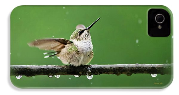 Hummingbird In The Rain IPhone 4s Case by Christina Rollo