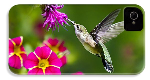 Hummingbird With Flower IPhone 4s Case