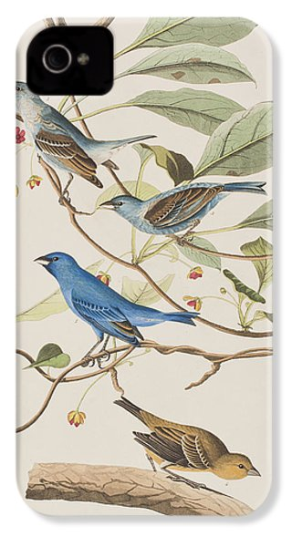 Indigo Bird IPhone 4s Case by John James Audubon