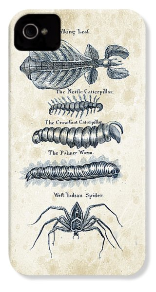 Insects - 1792 - 17 IPhone 4s Case by Aged Pixel