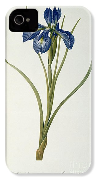 Iris Xyphioides IPhone 4s Case by Pierre Joseph Redoute