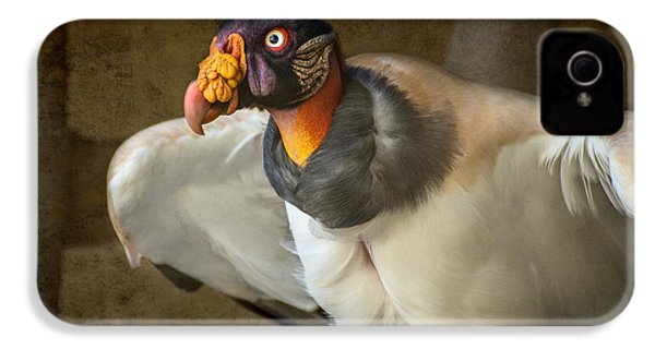 King Vulture IPhone 4s Case by Jamie Pham