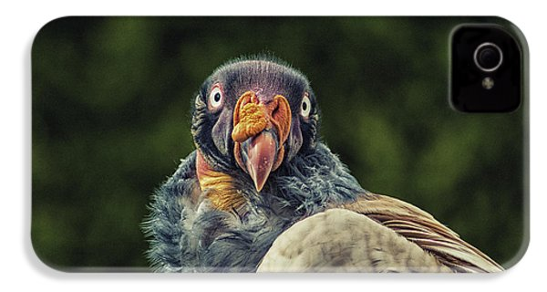 King Vulture IPhone 4s Case by Martin Newman