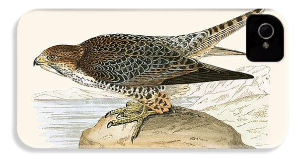 Lanner Falcon IPhone 4s Case by English School