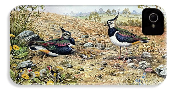 Lapwing Family With Goldfinches IPhone 4s Case by Carl Donner