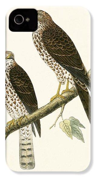 Levant Sparrow Hawk IPhone 4s Case by English School