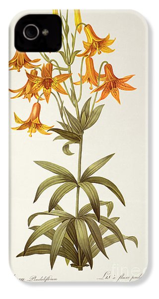 Lilium Penduliflorum IPhone 4s Case by Pierre Joseph Redoute