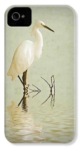 Little Egret IPhone 4s Case by Sharon Lisa Clarke